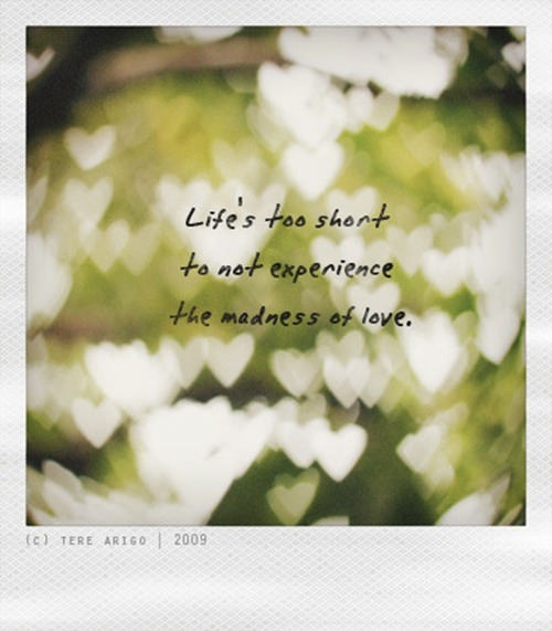 Tattletales At Work Quotes: Love #36: Life's Too Short To Not Experience The Madness